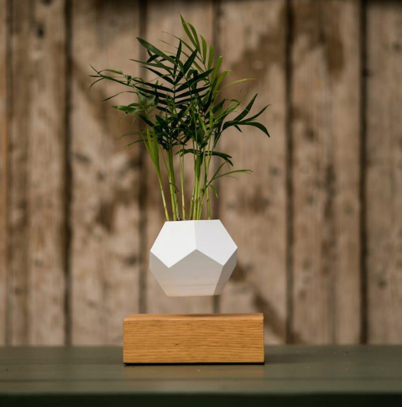 LYFE-planter