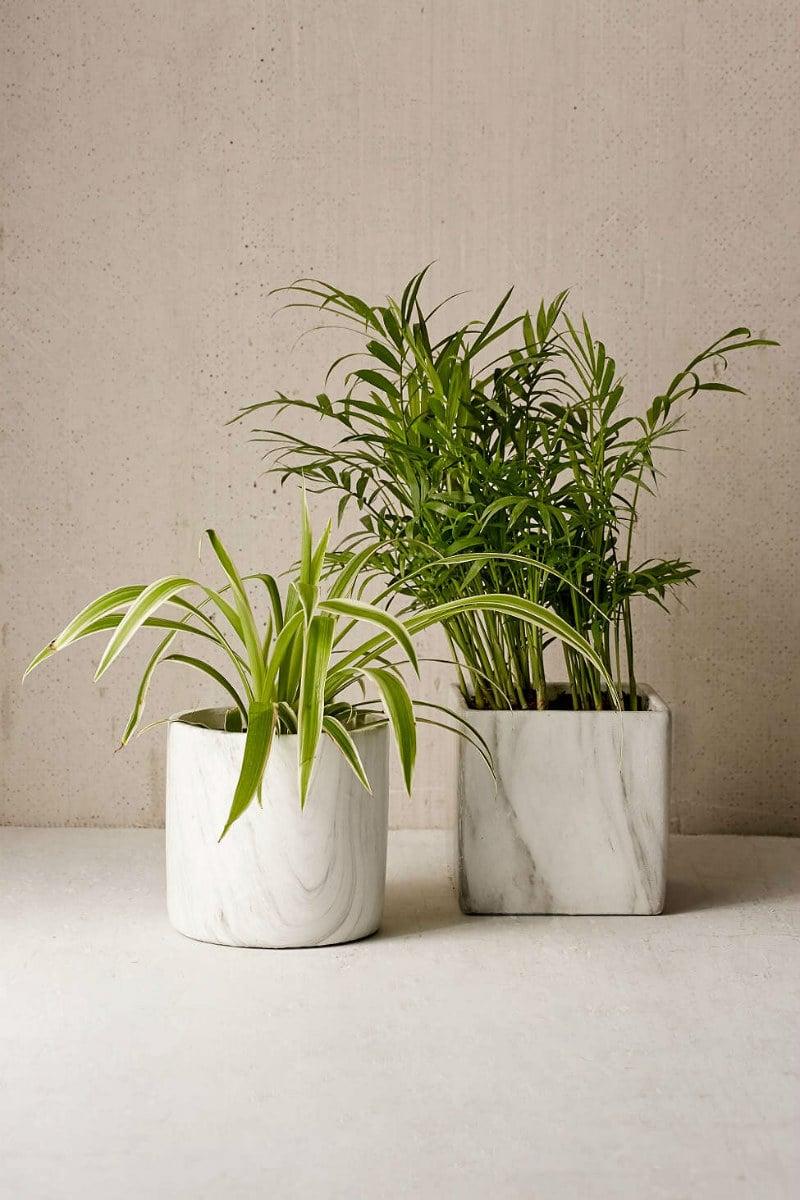 Marble Terracotta Planter