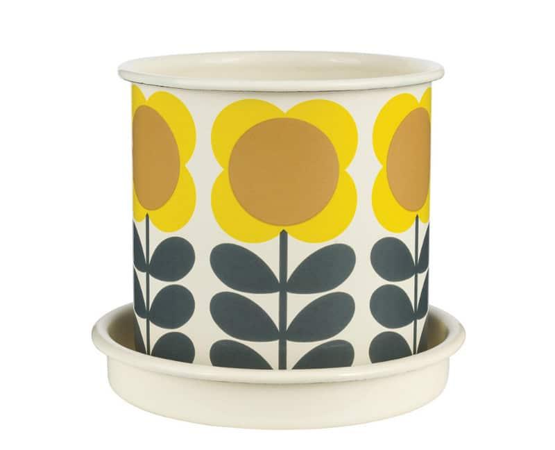 big-spot-flower-plant-pot-medium