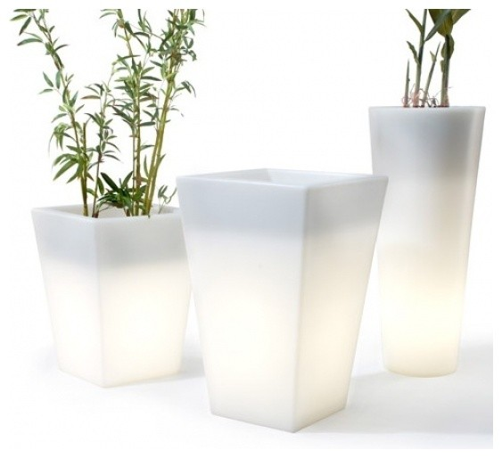 pl31 1 - 20 green accessories for the space-challenged