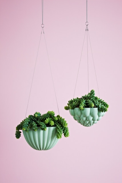 pl34 1 - 20 green accessories for the space-challenged