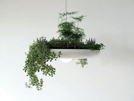 pl5 1 - 20 green accessories for the space-challenged