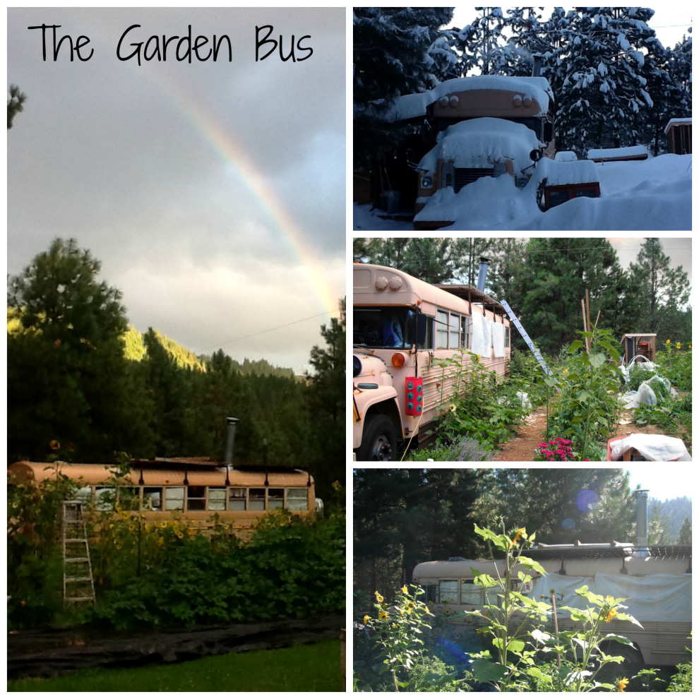 garden bus - Katherine lives happily in a converted school bus with her husband, an 8-month-old baby, a dog and a cat