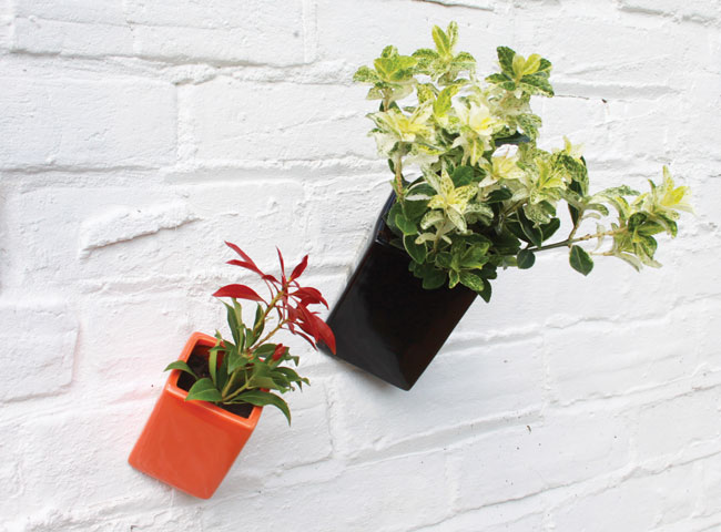 off-the-wall-pot