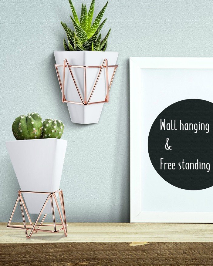 Wall and Desk Planters Vase