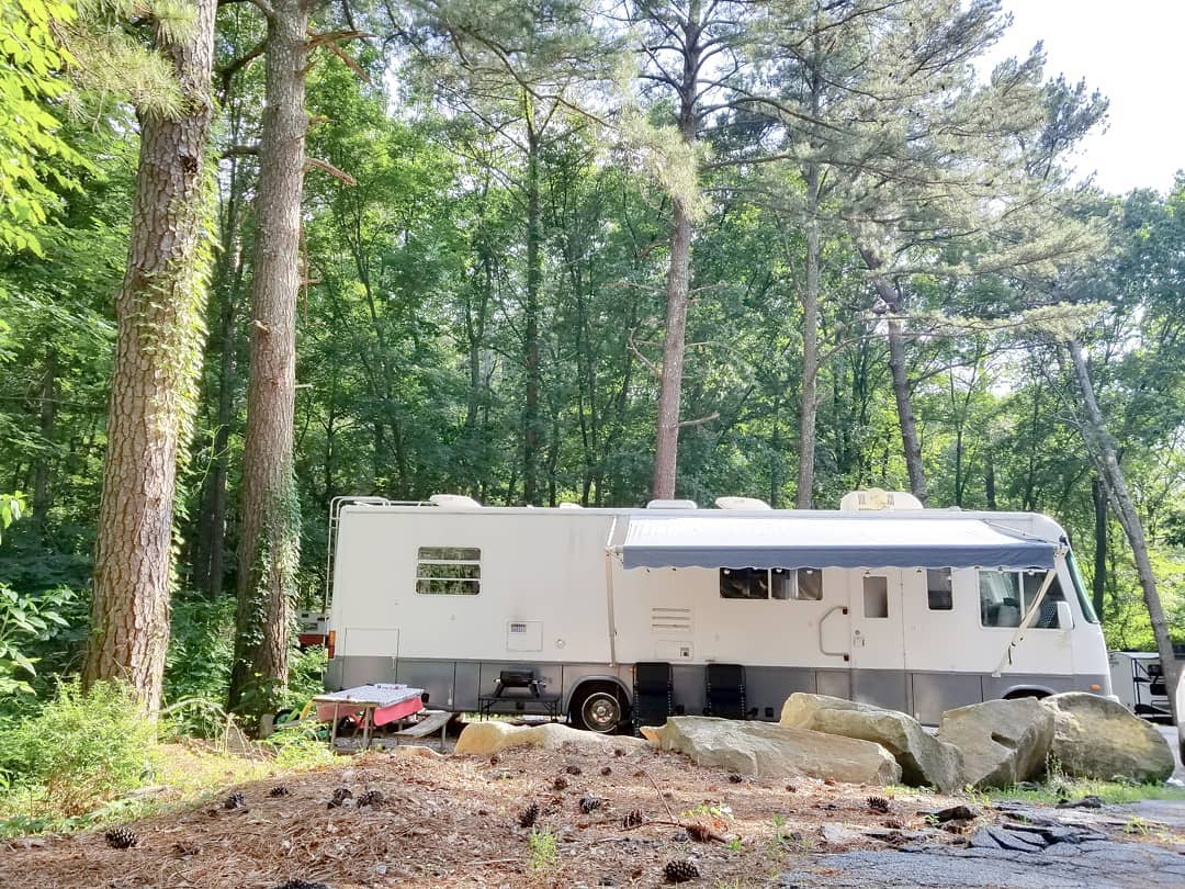 motor home - Family of four lives full-time in this stylish and well organized motorhome