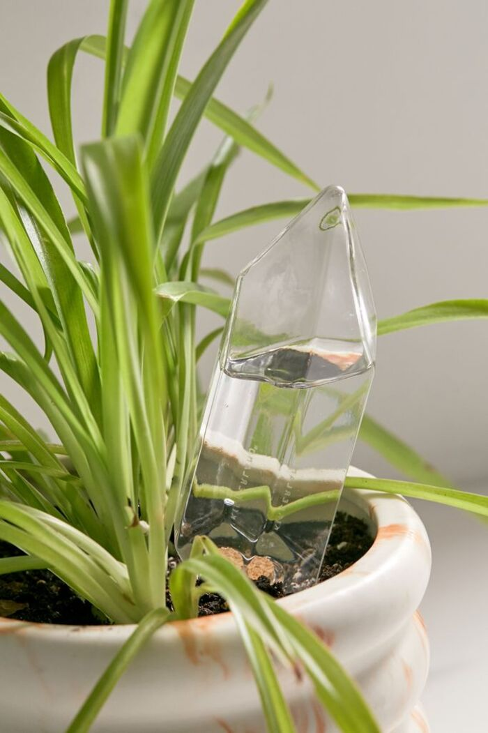 60750262 100 b - Plant killer rehabilitation: 24 self-watering ideas