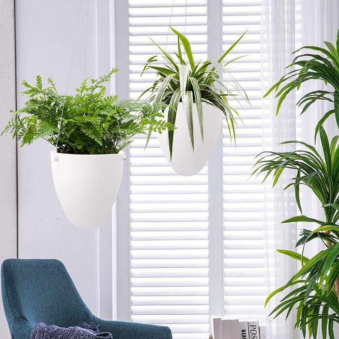 81qvmDAq48L. AC SL1500  - Plant killer rehabilitation: 24 self-watering ideas