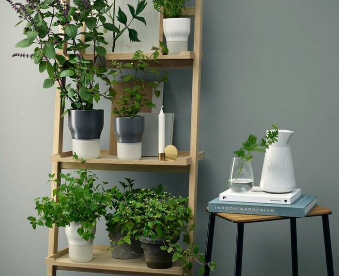 AmeenaSelf WateringPotPlanter - Plant killer rehabilitation: 24 self-watering ideas