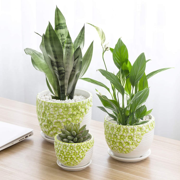 planter 12 - Give your favorite plant a fabulous makeover with one of these 25 planters