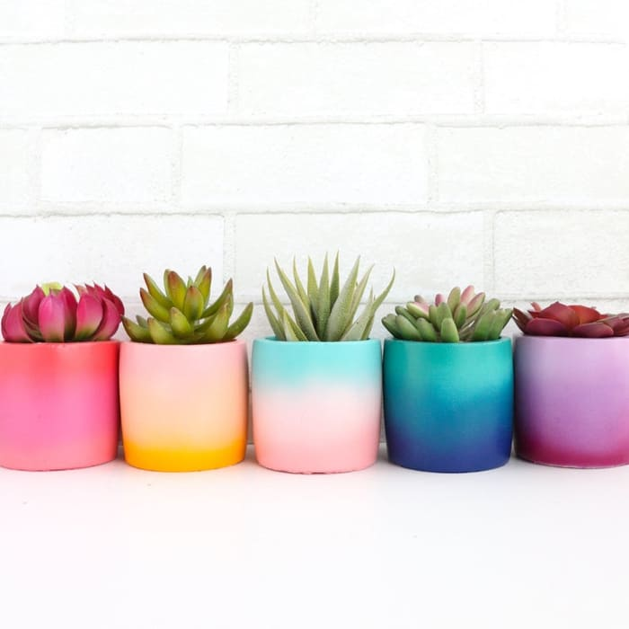 planter 5 1 - Give your favorite plant a fabulous makeover with one of these 25 planters