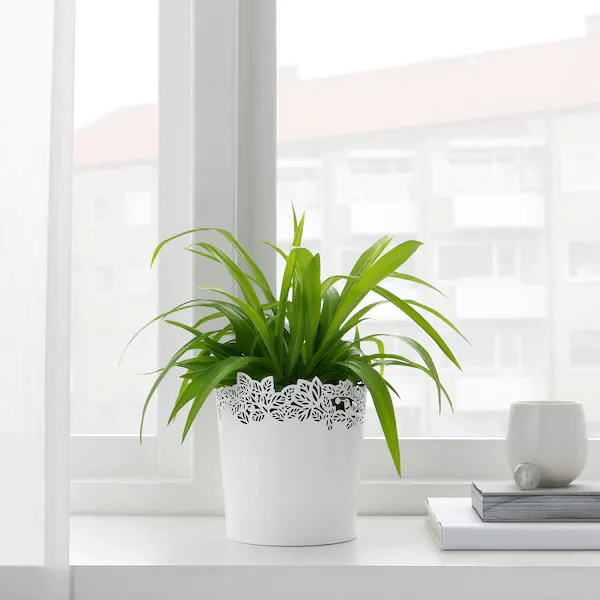 samverka plant pot white - Give your favorite plant a fabulous makeover with one of these 25 planters