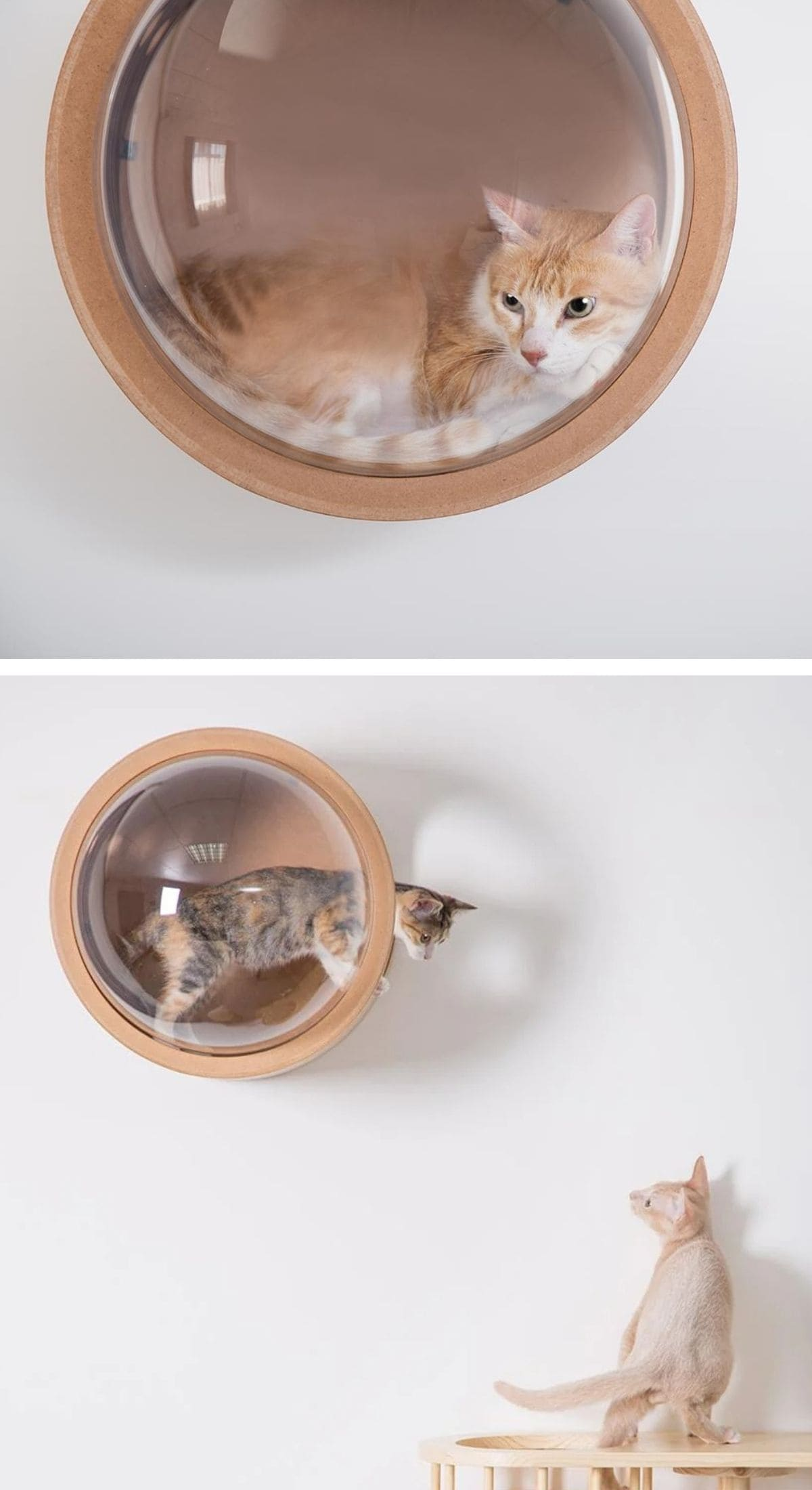 pet furniture 21 - 18 amazing pet furniture ideas that are perfect solutions for small spaces